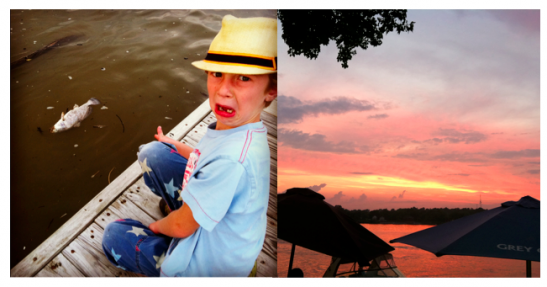 A beautiful sunset. And a dead smelly fish...Both viewed from the same dock.It's just a matter of perspective.
