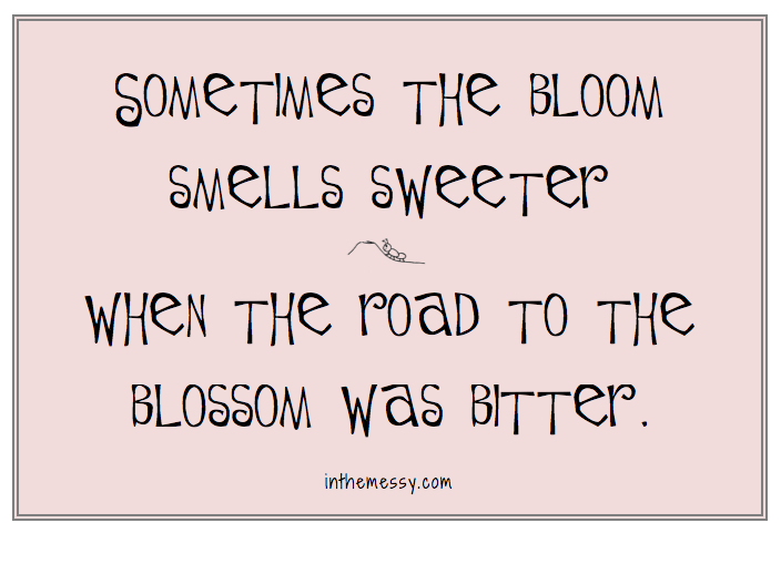 sometimes_the_bloom