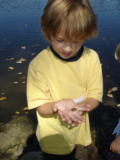 Henry holding a baby frog at Cedar Ridge. Charles showed him where to look.