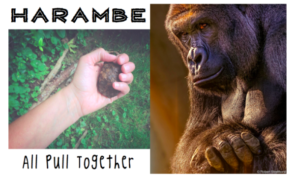 harambe_pull_together